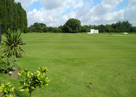 The cricket  pitch